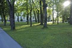 park_mauer