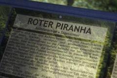 piranha_info