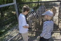 michi_und_zebra_2