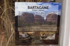 bartagame_info